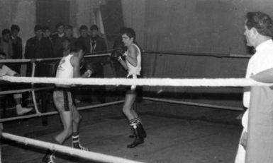 Od siročeta i monaha do bokserskog stručnjaka (12): Od boksera do molera