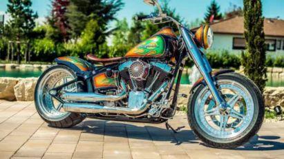 Oslikani Harley
