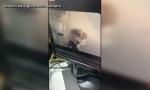 Ovo je majka koja je u Vrnjačkoj Banji ostavila bebu u taksiju (VIDEO)