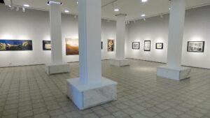 Pola veka GSLU – izložba niških umetnika