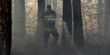 Pune ruke posla za borske vatrogasce: Gorelo na čak šest lokacija