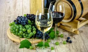 Putevima vina: Provedite se kraljevski uz piće bogova!