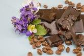 Slatka investicija: Švajcarci prave čokoladu u Vojvodini