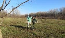 Studenti i profesori pošumljavaju Veliko ratno ostrvo uz pomoć Zelenila Beograd
