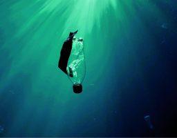 Svet bez otpada – ambiciozan i hrabar potez