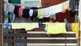 Svetski dan izbeglica u Srbiji jedni dočekuju maštajući o drugom domu, drugi u strahu da ga opet ne izgube