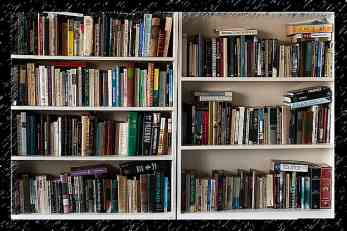 Više od dve trećine Novosađana čita knjige