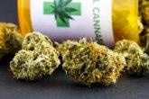 Zaplenjeno 82 kilograma marihuane na KiM